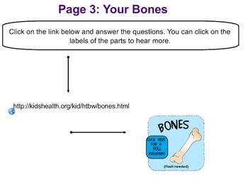 Skeletal System Jog the Web