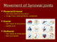 Skeletal System: Joints and Articulations PowerPoint