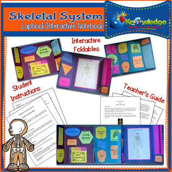 Skeletal System Lapbook/Interactive Notebook