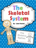 Skeletal System Note taker/booklet
