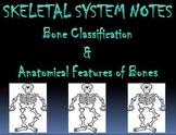 Skeletal System   Bone Classification PowerPoint Presentation