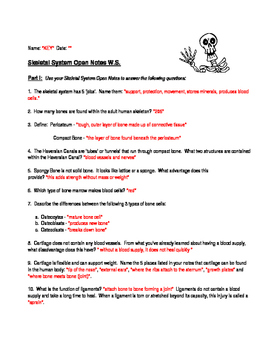 Skeletal System Open Notes Worksheet with KEY