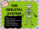 Skeletal System Pack: PowerPoint, Student Notes, Fold-Ups and Thinking routine