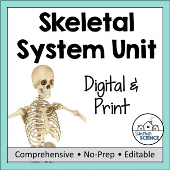 Skeletal System Unit Ppt Doodle Notes Diagrams Activities And Quiz
