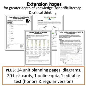 Skeletal System Unit: PPT, Illustrated Notes, Diagrams, Activities, and Quiz