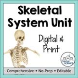 Skeletal System Unit - Skeleton