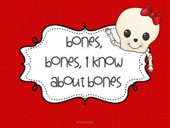 Skeletal System Prior Knowledge