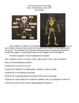 Skeletal System Project