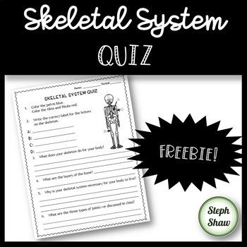Skeletal System Quiz