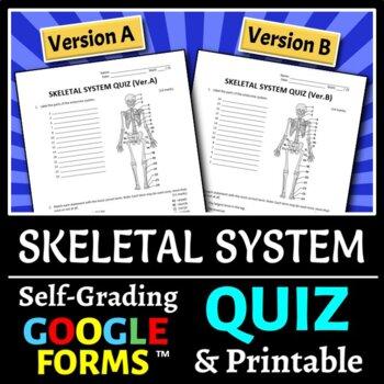 Skeletal System Quiz - Two Versions {Editable}