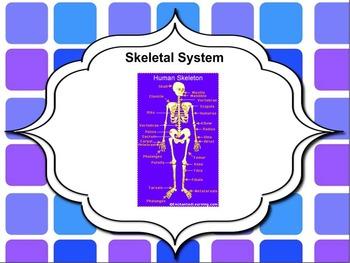 Skeletal System Smartboard