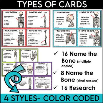 Skeletal System Task Cards