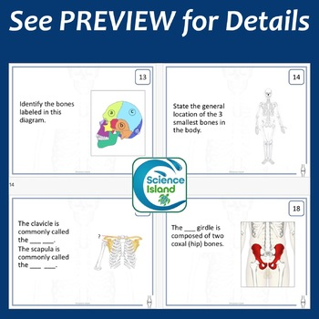 Skeletal System Task Cards with PowerPoint Review