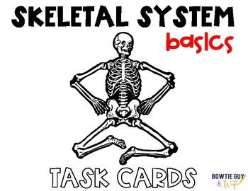 Skeletal System Task Cards (Basic Human Skeleton Vocabulary)