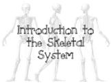 Skeletal System Unit Bundle (Anatomy)