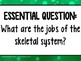 Skeletal System Unit and Interactive Notebook Resource: Grades 3-5