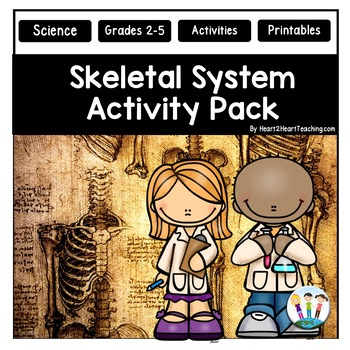 Human Body Systems: Skeletal System Activities & Vocabulary Posters