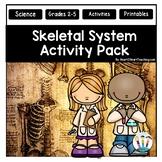 Human Body Activities: Skeletal System Activities & Vocabulary Posters