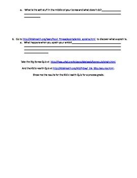 Skeletal System Webquest