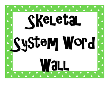 Skeletal System Word Wall