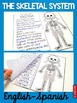 Skeletal System fold and learn