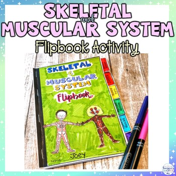 Skeletal and Muscular System Flipbook Review Activity