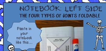 Skeletal system PWPT foldable Interactive Notebook notes 5th 6th 7th 8th jr high