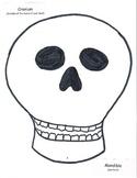Skeleton: Almost Life Size