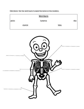 Skeleton Assessment