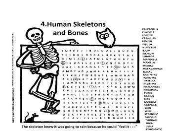 Skeleton Bones word search or wordsearch