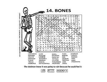 Halloween Anatomy Skeleton word search or wordsearch