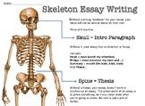 Skeleton Essay Any Literature Essay Modeling Scaffolding