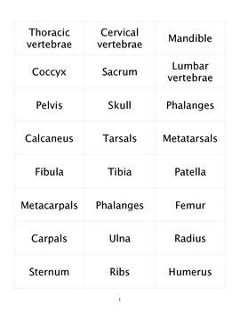 Skeleton Labels