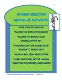 Skeleton Match-Up Activities, Skeleton, Human Body