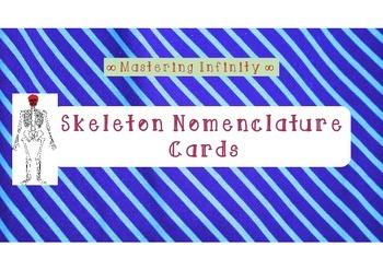 Skeleton Nomenclature Cards (FREE)