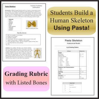 Skeletal System and the Pasta Skeleton