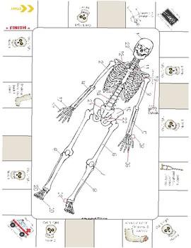 Skeleton Practice Board Game