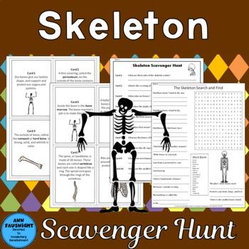 Skeleton Scavenger Hunt