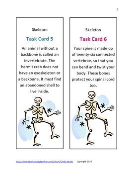 Skeleton Scavenger Hunt, October Activity, Human Body