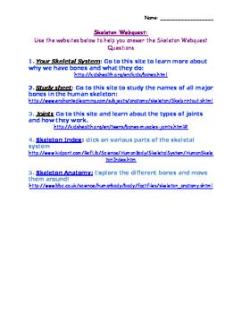 Skeleton Webquest