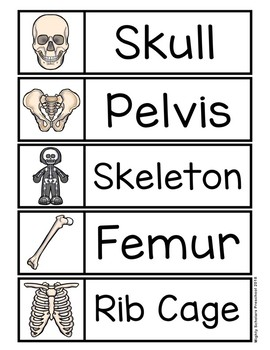 Skeleton Word Cards and Writing Paper