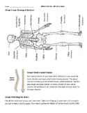 Skeleton and Bone Stations/Centers
