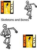 Skeleton and Bones