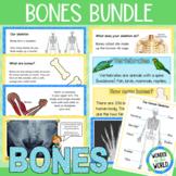 Skeletons and Bones bundle (Google Slides and display)