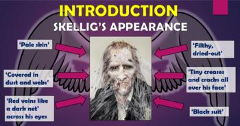Skellig - The Development of Skellig!
