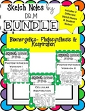 Sketch Notes PHOTOSYNTHESIS/ RESPIRATION BUNDLE! W Student Notes! Includes 3!