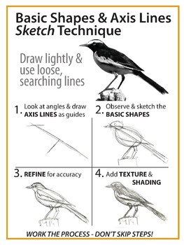 Sketch process - Basic shapes & axis lines