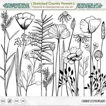 Sketched Country Flowers, Floral and Foliage with Tall Flower Stems