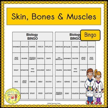 Skin, Bones, and Muscles BINGO