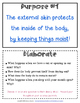 Skin--External Organ protects the body: 3 activities, 5Es, inquiry, 4-LS1-1